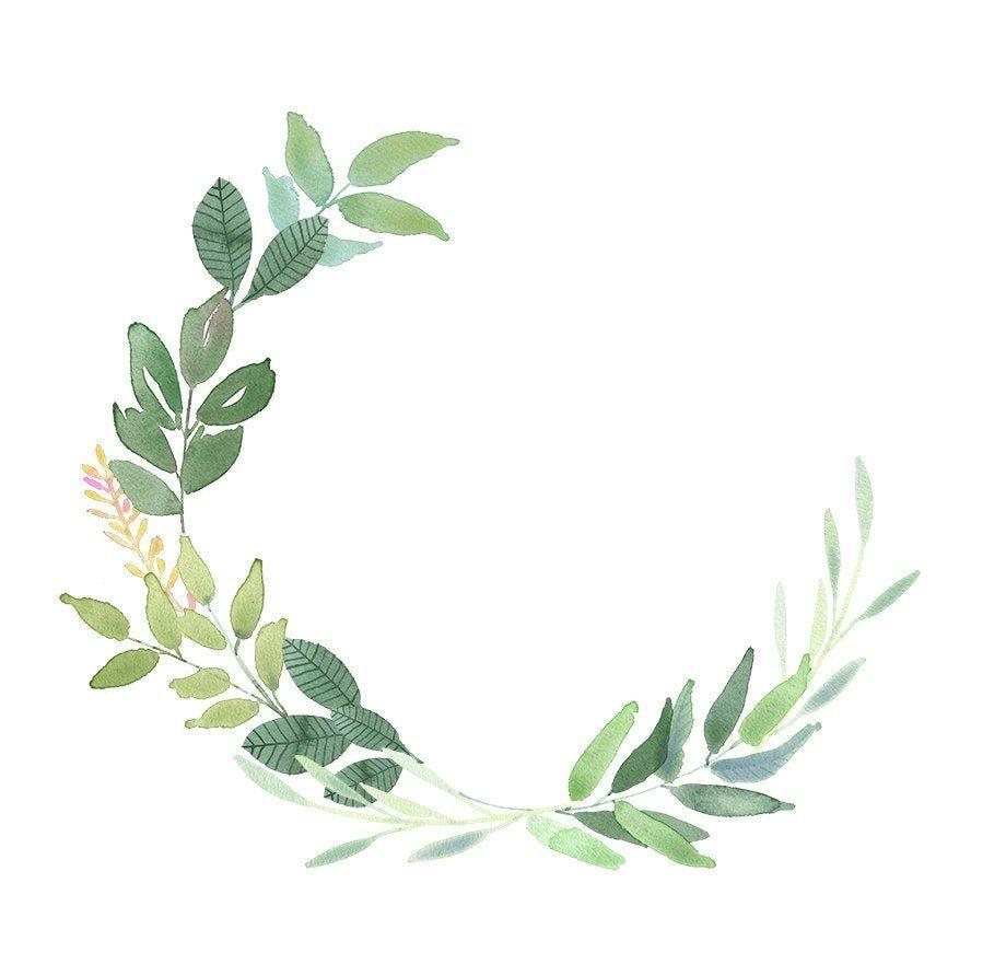 Greenery Wreaths Leaf Watercolor Clip Art Green Leaves Borders