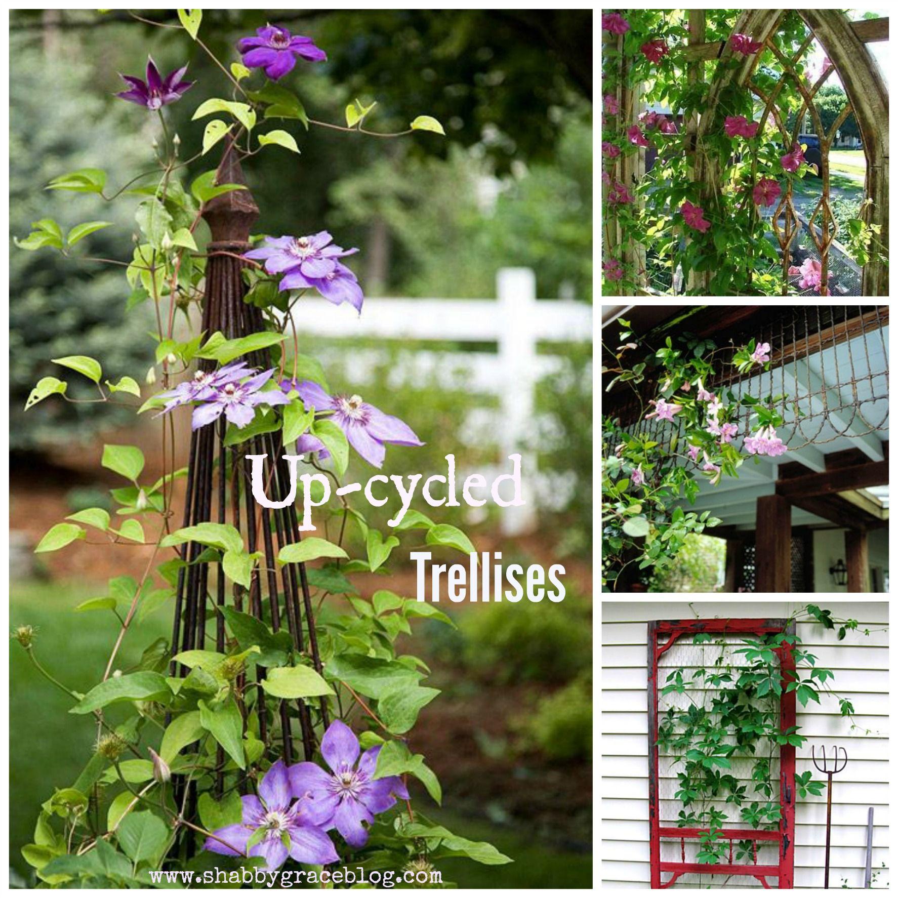Upcycled Trellises.  www.shabbygraceblog.com