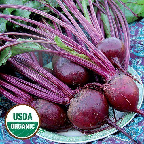 David S Garden Seeds Beet Detroit Dark Red Eb120c Red 200