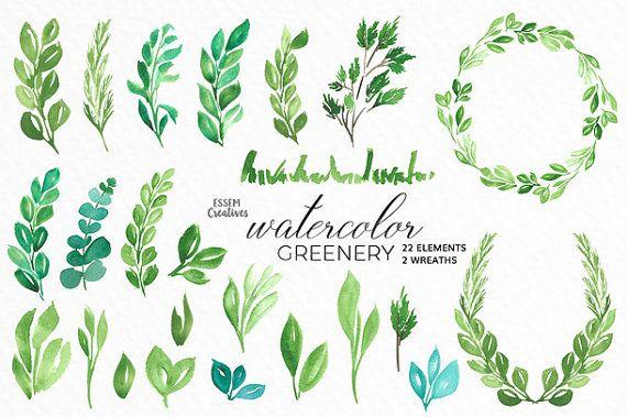 Watercolor Leaves Clipart Leaf Wreath Green Branch Eucalyptus Garden Wedding