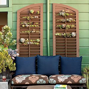 Succulent Shutters - Stylish Succulent Garden Projects - Sunset Mobile