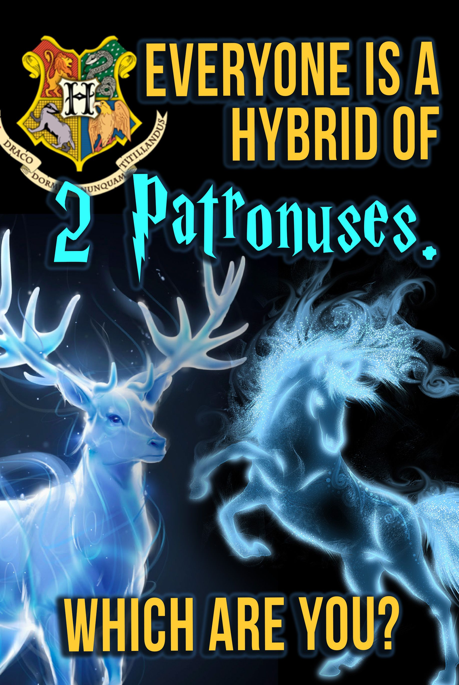 Harry Potter Quiz Everyone Has A Hybrid Of 2 Patronuses What Is Yours Harry Potter Patronus Harry Potter Quiz Harry Potter Life Quiz