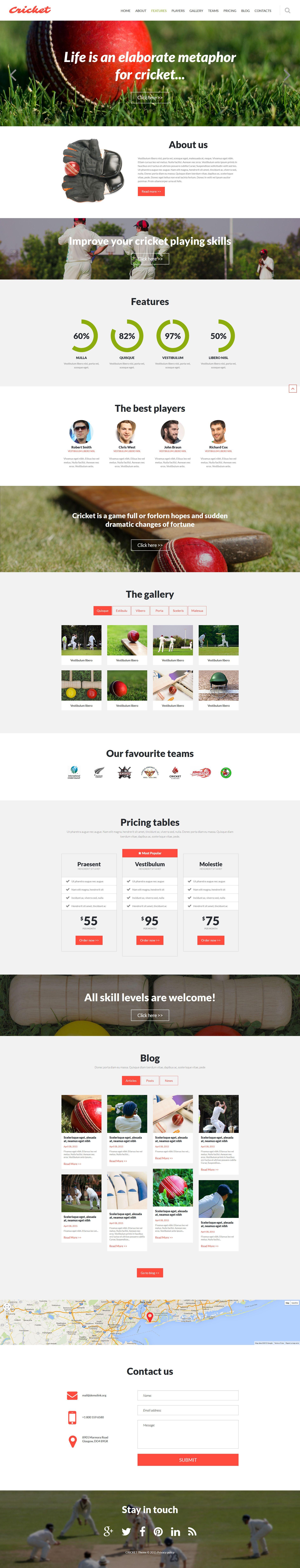 Cricket Club Joomla Template | Website Template Modern | Joomla