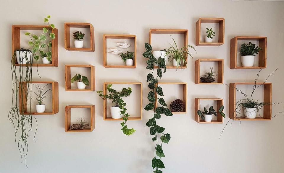 Great Idea For A Plant Wall Homedecor Living Room Plants Plant Decor Plant Wall