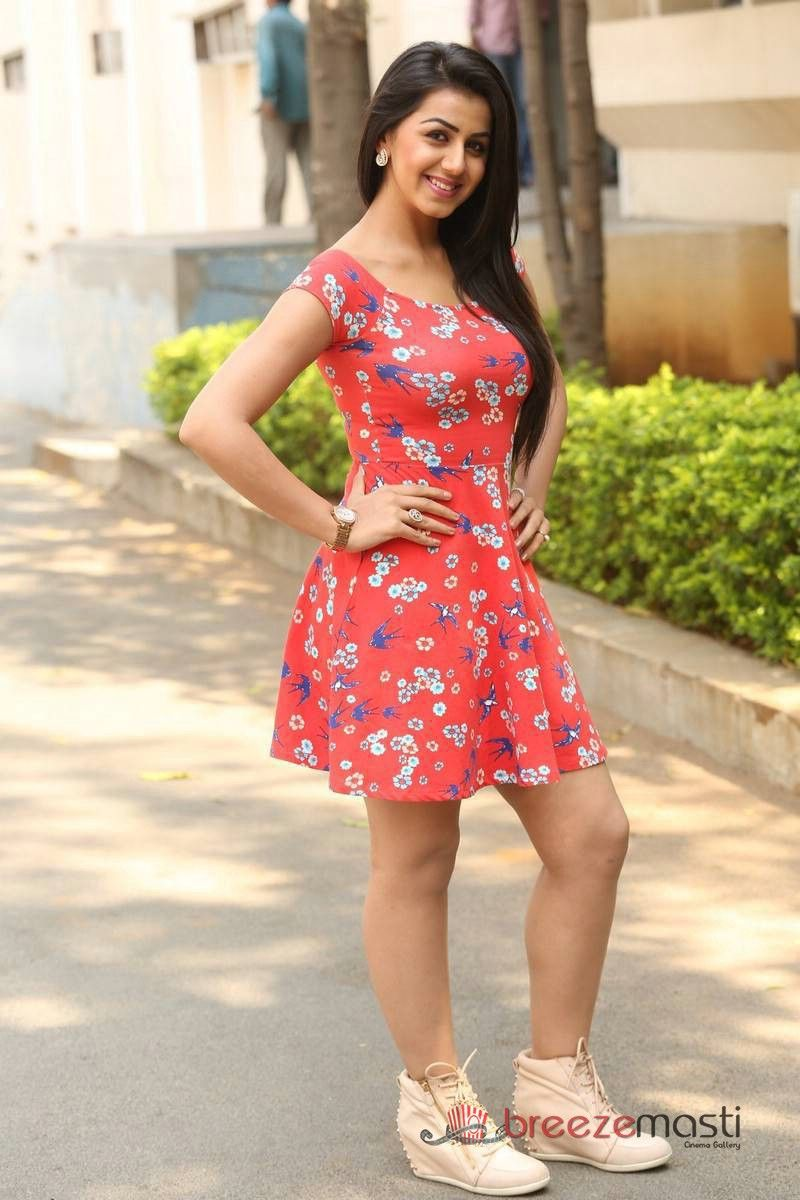 Telugu Actress Nikki Galrani Glamour Photos 7 Short Frocks Mini