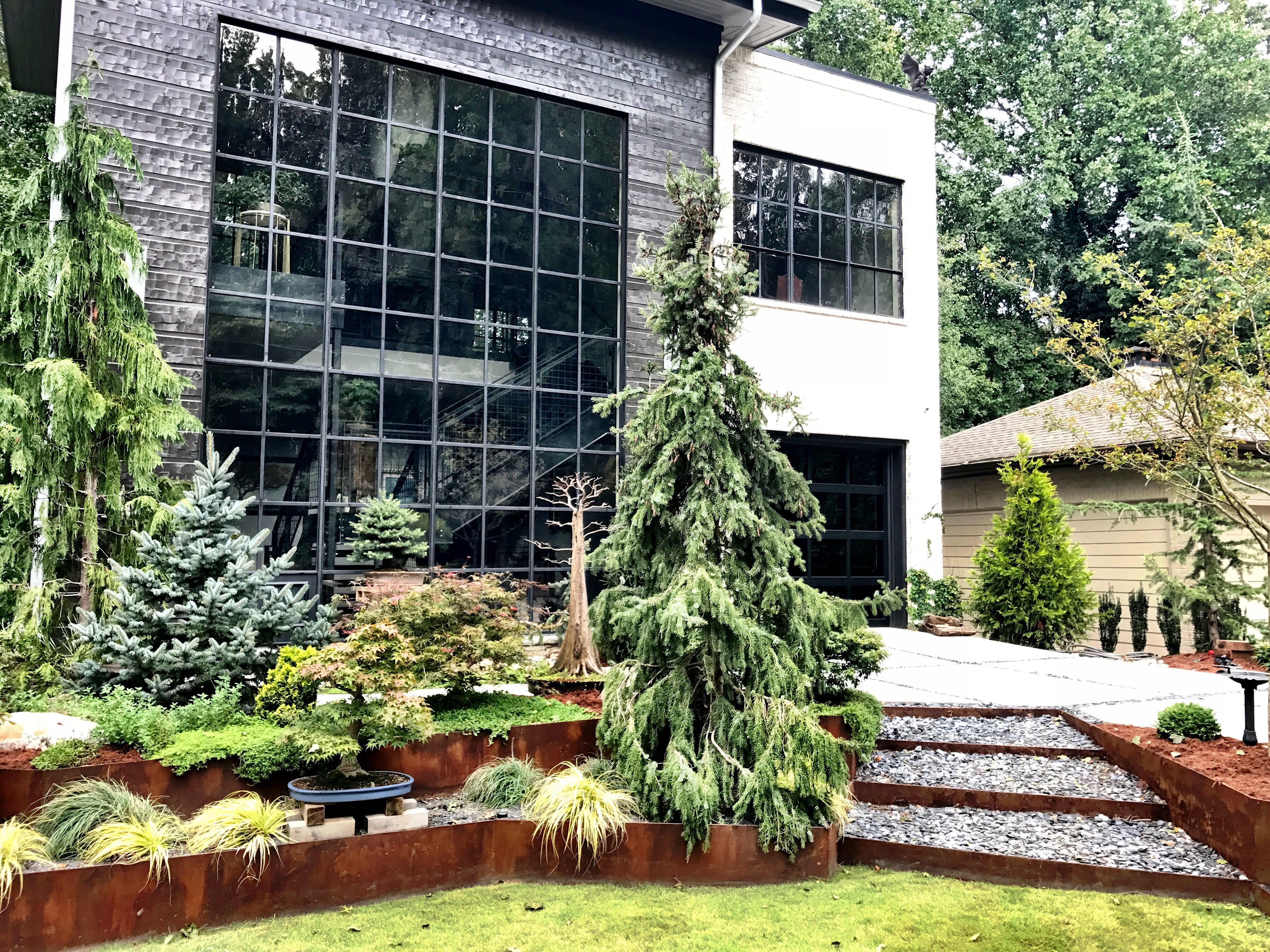 Corten Steel Conifer Collecton Garden By Brendan Butler