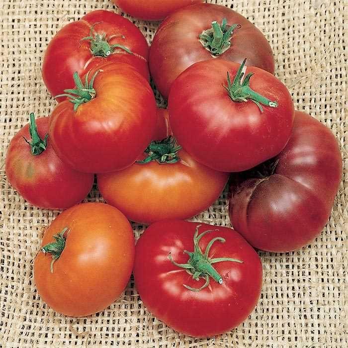 Brandywine Tomato Mix Vegetable Seed Flower Seeds 400 x 300