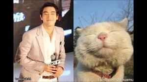 I see no difference ^_^