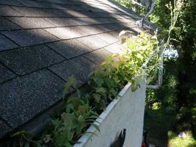Gutter Cleaning Cleaning Gutters How To Install Gutters Gutter Repair