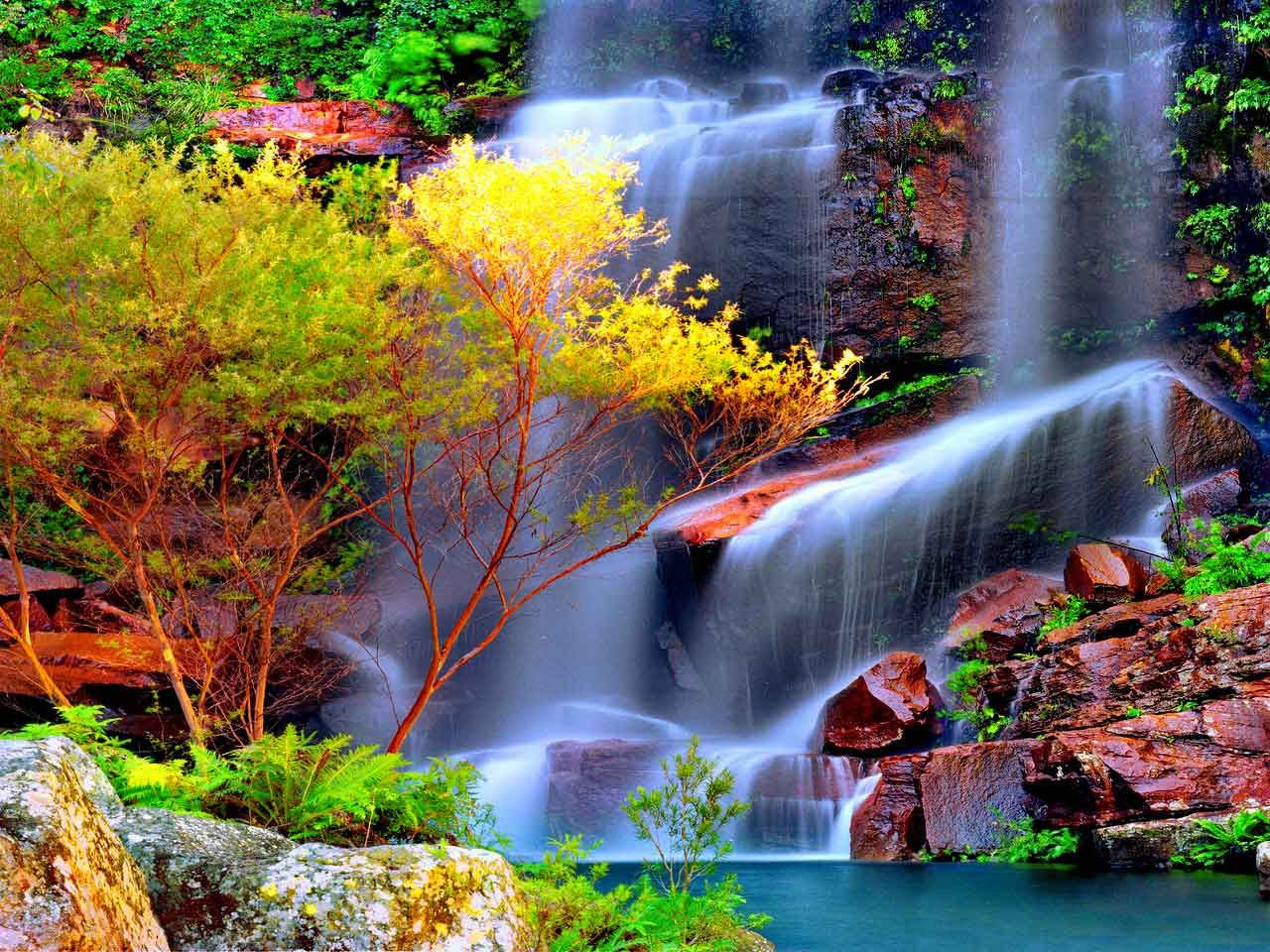 paisajes de la naturaleza gratis para protector de