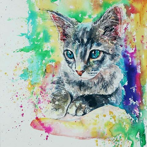 Cat Colorful Draw Drawings Art Watercolor Art Diy