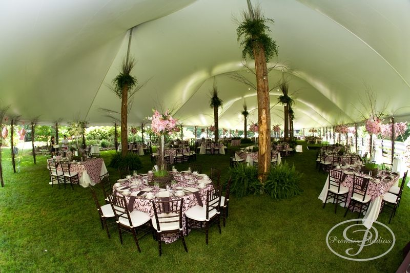 Tent wedding decoration more in httpeventcentralpa we are proud to offer a diverse selection of tents chairs and more for weddings in pa md and de check out our wedding rental services here junglespirit Choice Image