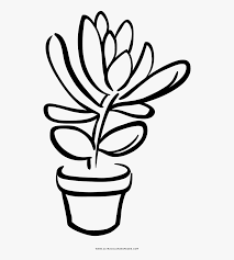 Collection Of Free Succulents Drawing Color Download Succulent Clip Art Black And White Free Transparent Clipart Succulents Drawing Sun Clip Art Clip Art