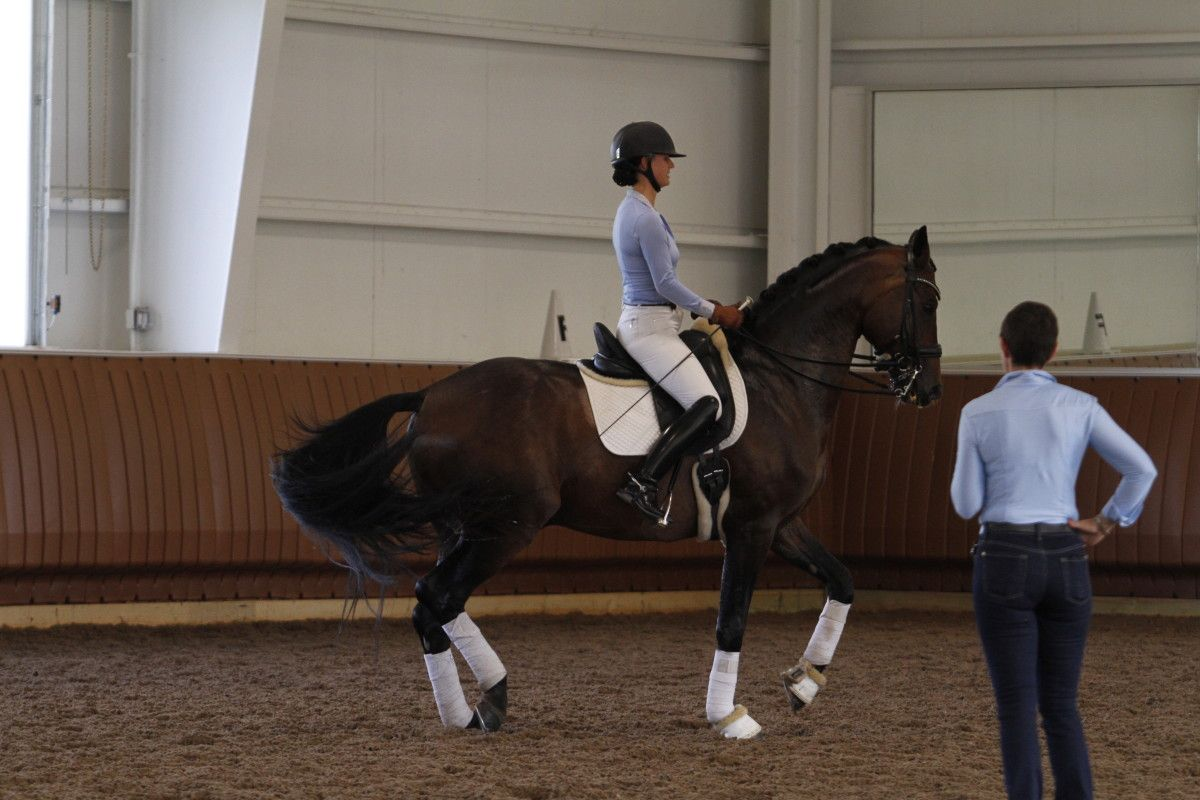 18 Tips from  German Olympian  Monica  Theodorescu. Inside a session from the Old Masters Series at Avalon Farmin North Salem, New York