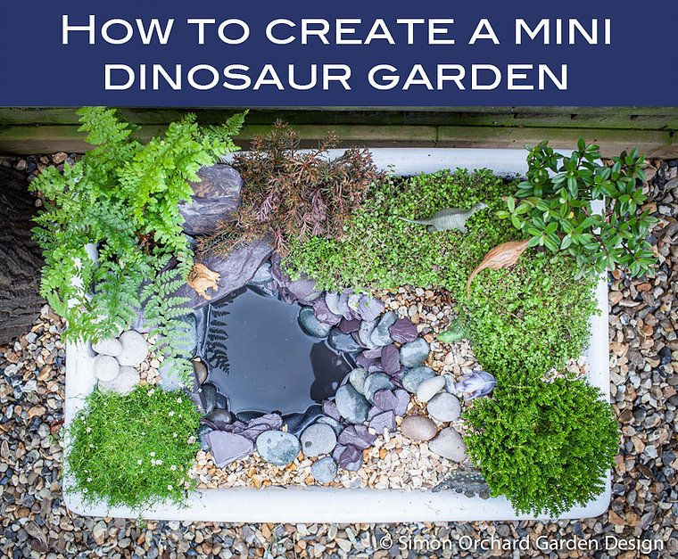 How to create a mini dinosaur garden Dinosaur garden