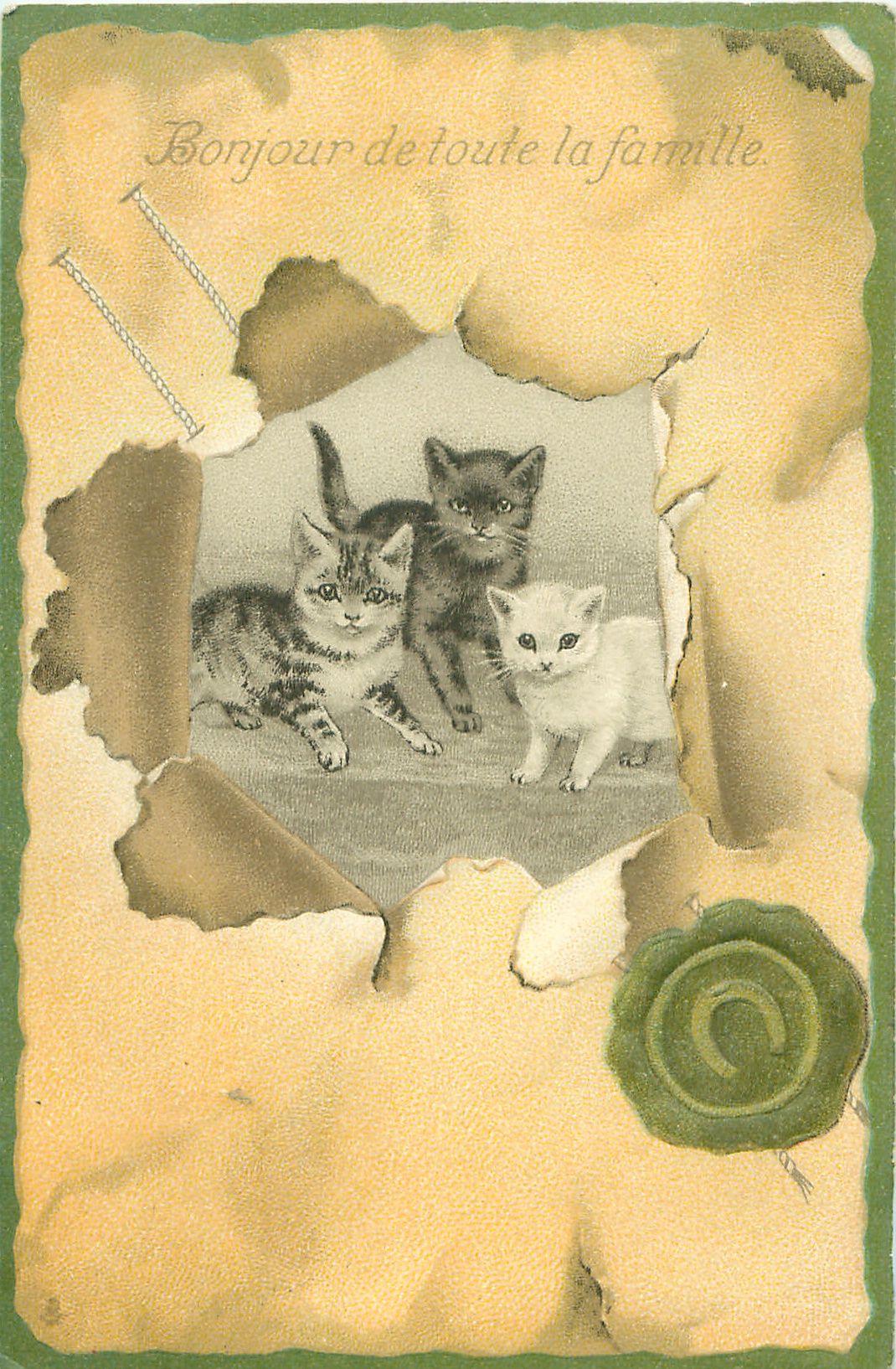 Full Sized Image: BONJOUR DE TOUTE LA FAMILLE inset of three kittens facing front - TuckDB