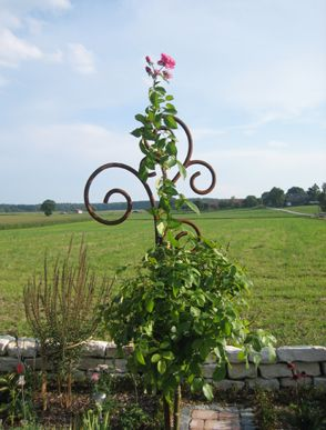 Laternenhalter Blumenampelhalter Laternenstab Pflanzenstab Kunstvoll Aus Edelrost Schweres Hochwertiges Massives Pflanzen Blumen Ampel Staudenhalter
