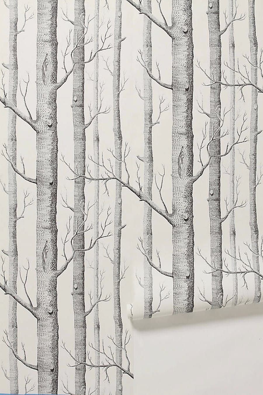 10 Excellent Sources For Buying Birch Tree Wallpaper Birch Tree Wallpaper Wood Wallpaper Birch Wallpaper