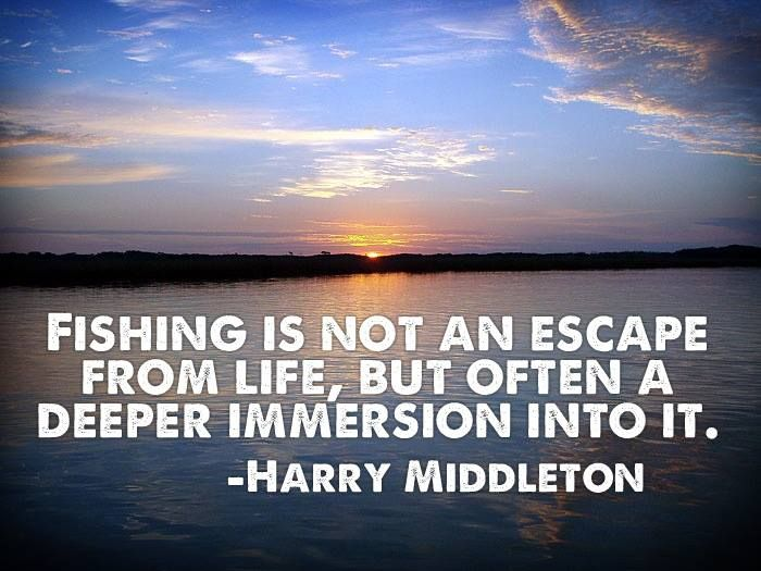 Fishing Escape by Harry Middleton   Fishing quotes, Fish ...