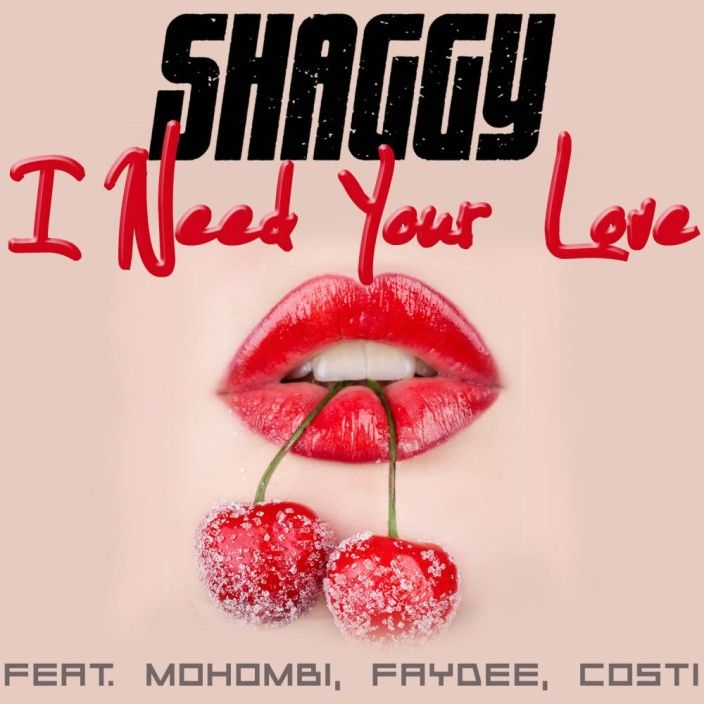 I Need Your Love – Shaggy | Official Video * http://voiceofsoul.it/i-need-your-love-shaggy/