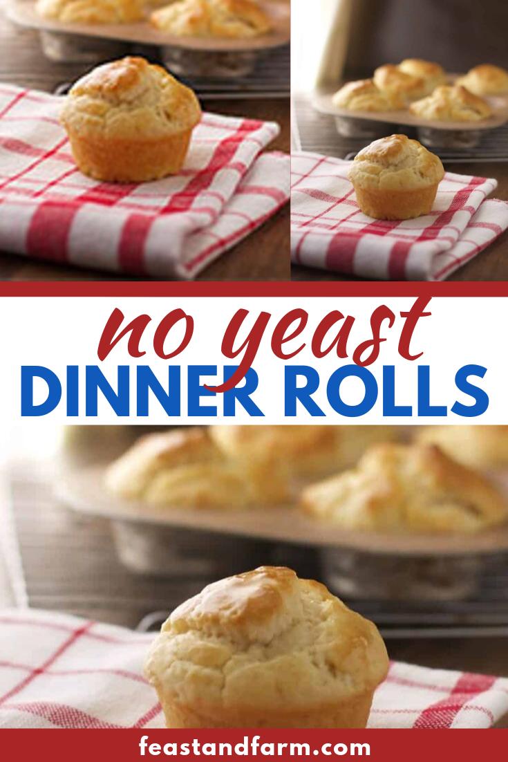 No Yeast Dinner Rolls Recipe Dinner Rolls Homemade Bread