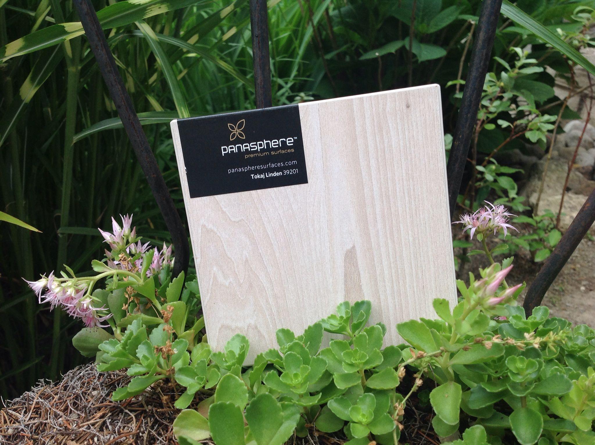 Tokaj Linden 39201. Panasphere's TFLaminate surface designs at Monarch Custom Plywood Inc. T. 905.669.6800. Monarch Custom Plywood Inc. is Panasphere Surfaces distributor in Ontario, Canada. Monarchply.com