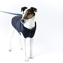 Beetle Dog Coat Navy - Mungo & Maud Dog and Cat Outfitters - This is way too expensive for me but it's a great idea for a DIY from a thrift store sweater and kids coat