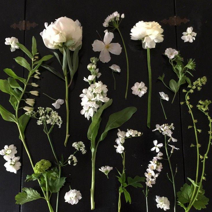 White Garden by Petersham Nurseries