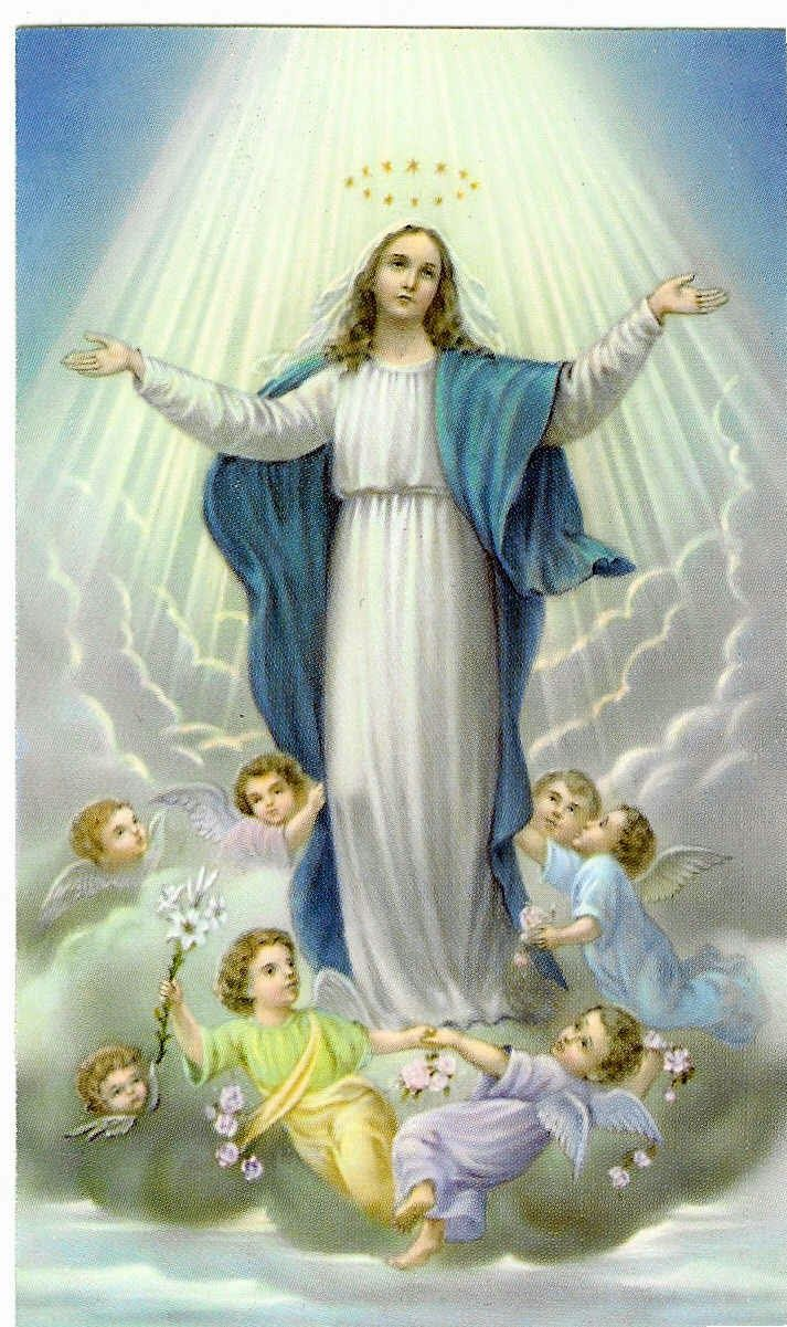 Assumption Hd Wallpaper Assumption Of Mary Blessed Virgin Mary