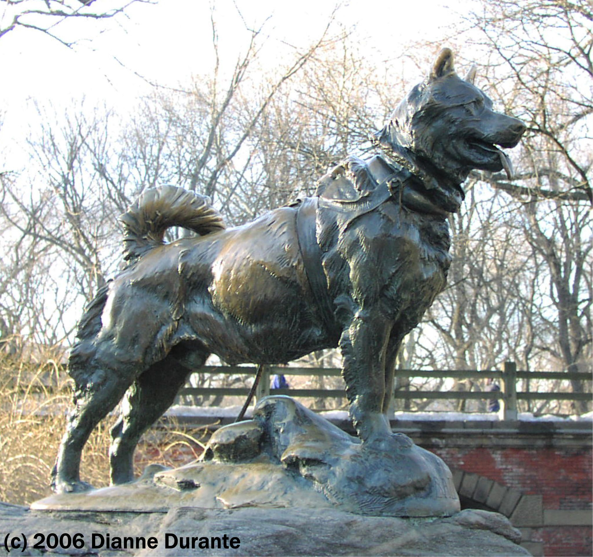 Balto sculpture in Central Park