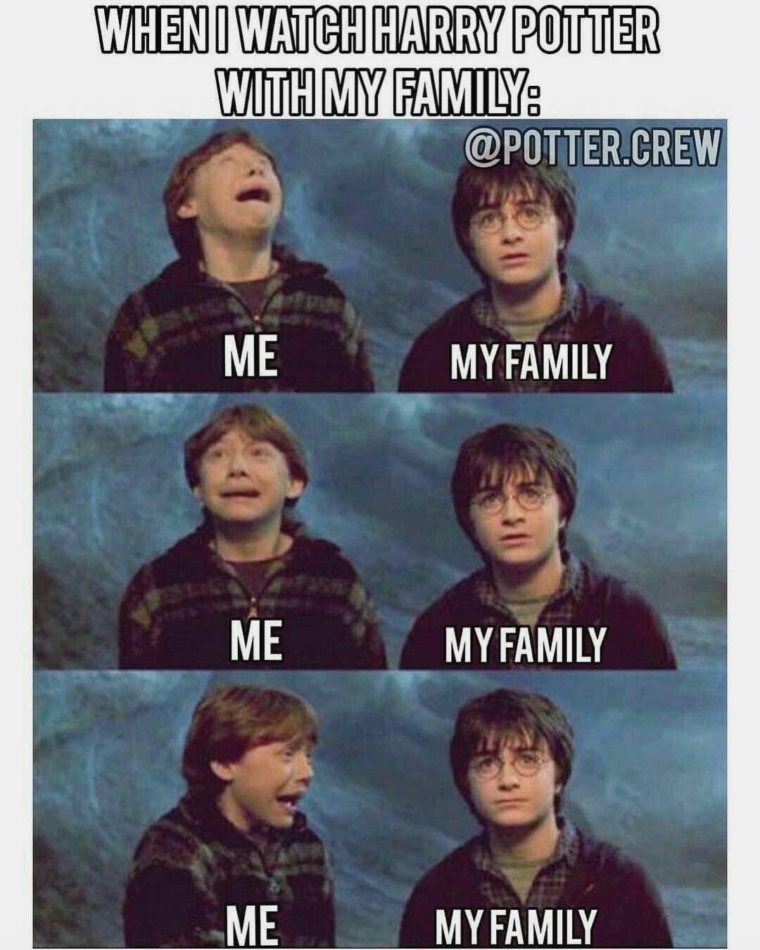 Lol Meine Familie Ist Wie Familie Meine Harry Potter Quiz Harry Potter House Quiz Harry Potter Puns