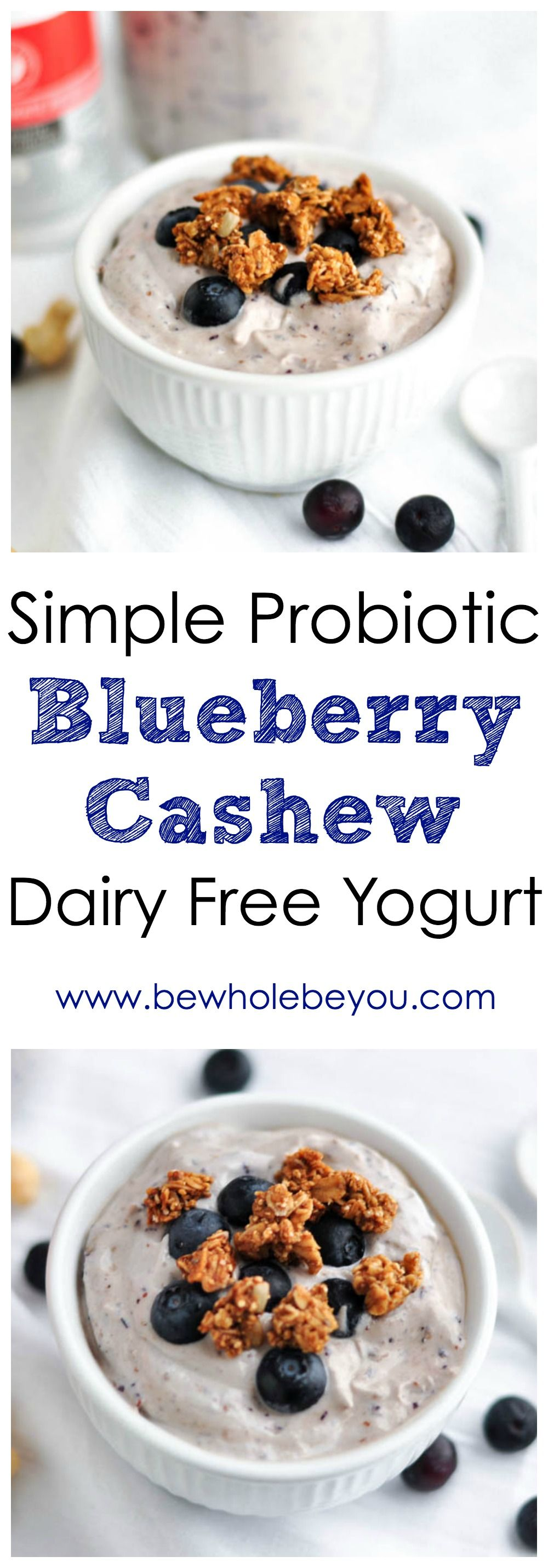 Simple Blueberry Cashew Dairy Free Probiotic Yogurt