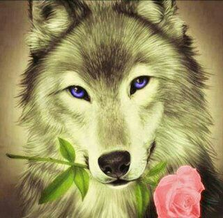 Wolf Rose Kawaii My Favorite Animals Wolf Painting Wolf