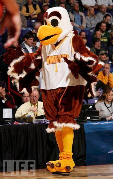 Big Stuff Winthrop Eagles Mascot Mascot Winthrop Winthrop