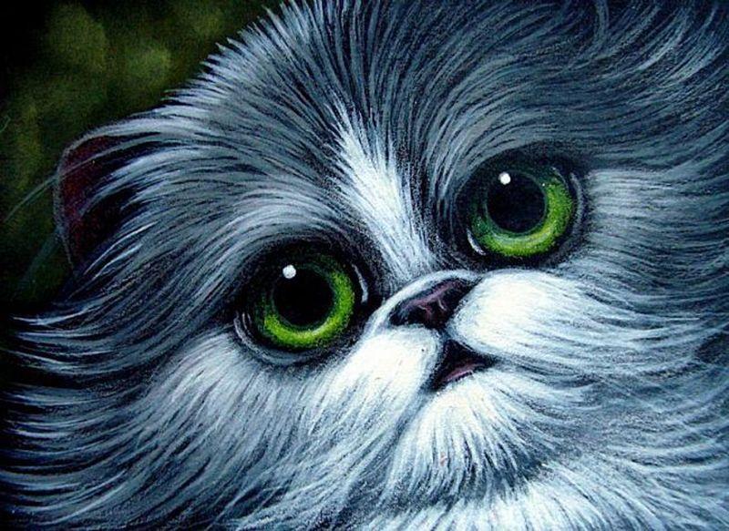 Tuxedo Persian Cat Par Cyra R Cancel Persian Cat Cats Big Eyes