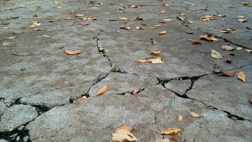 Fall crackle