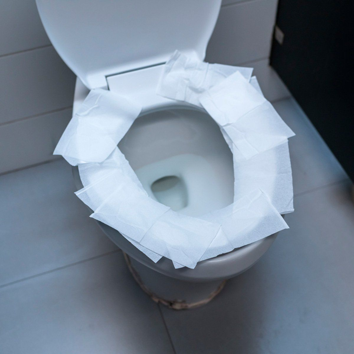 Stop Believing This Toilet Myth With Images Toilet