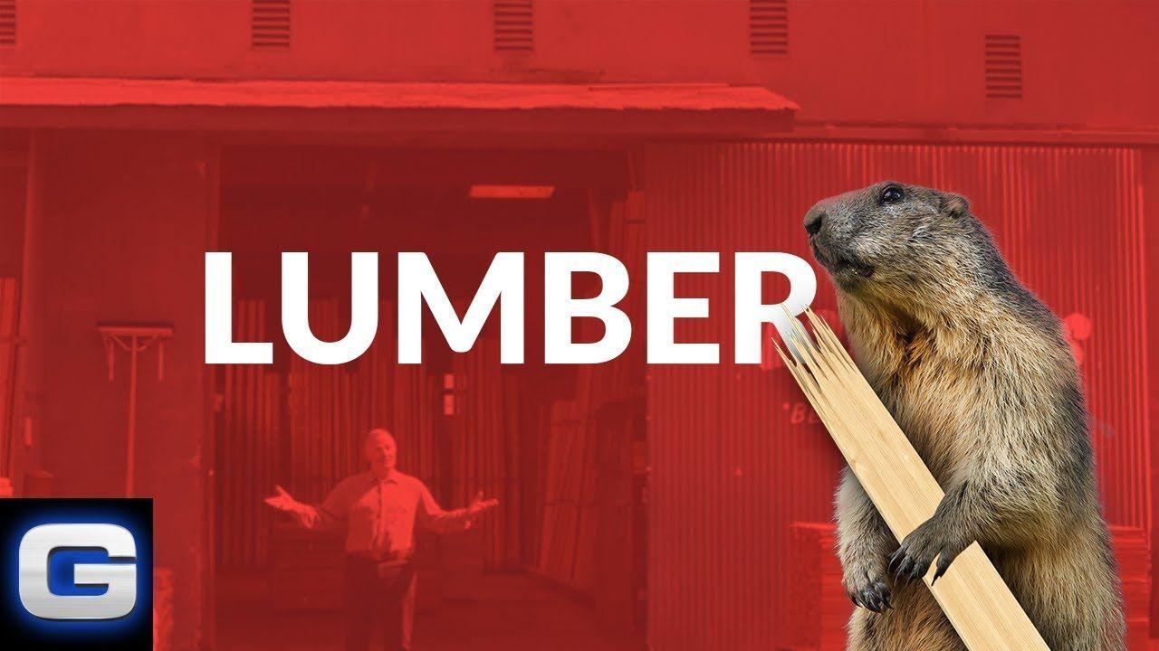Woodchucks Sequel Lumber Yard Geico Insurance Youtube In 2020