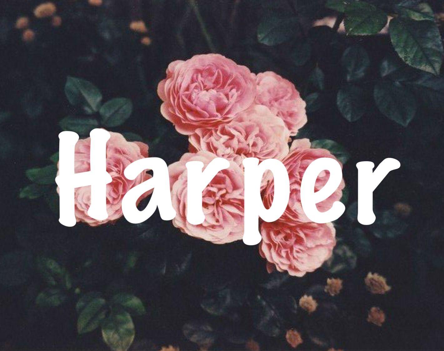 Harper Baby Names Baby Girl Names Strong Names Unique Names H