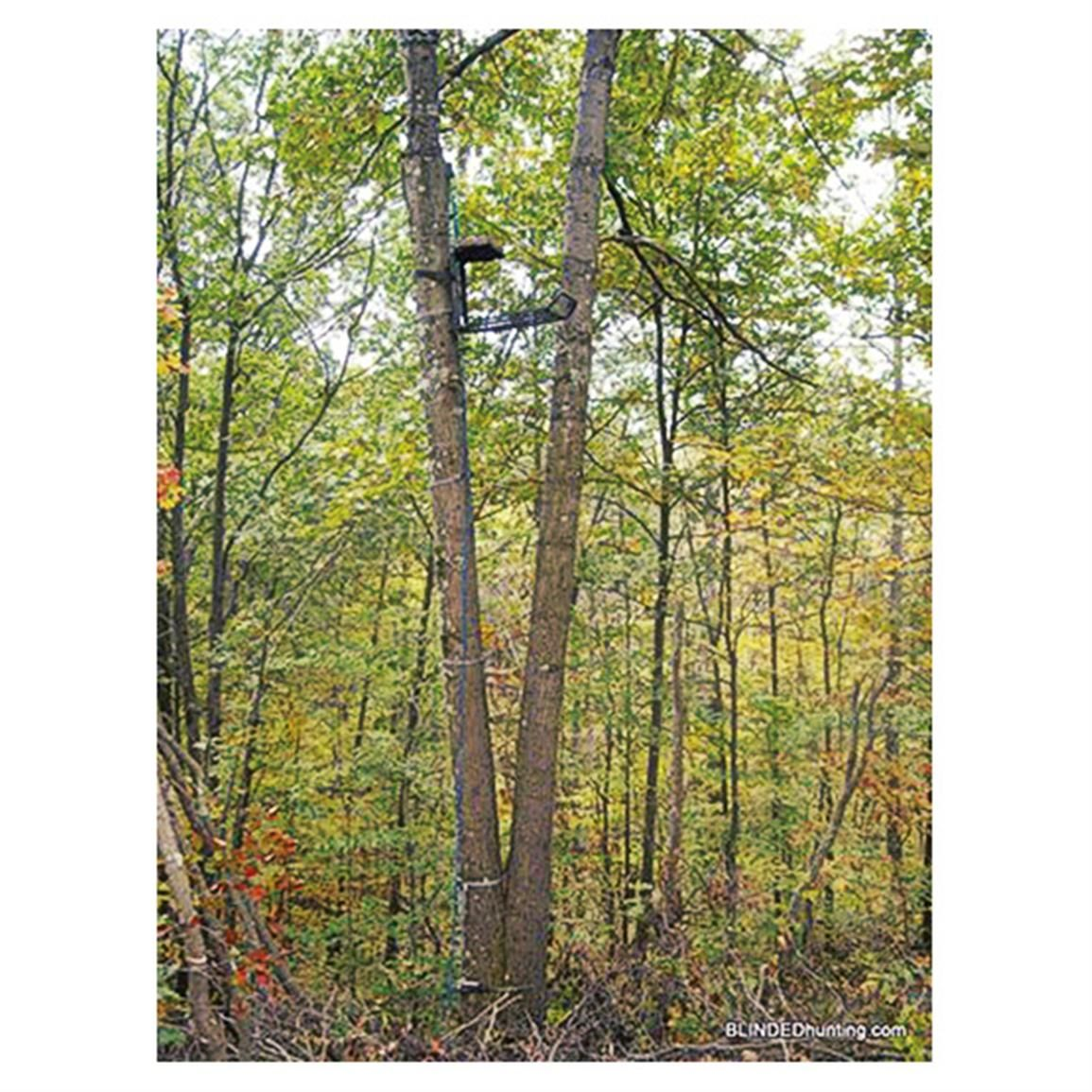 Blinded Hunting Crow S Nest Tree Stand Blind Tree Stand