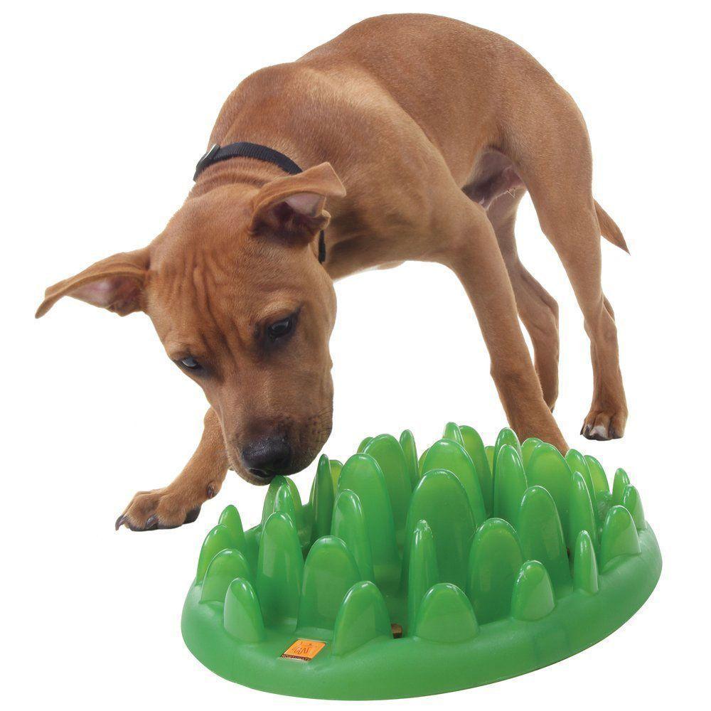 Northmate Green Interactive Slow Food Dog Bowl Interactive Dog