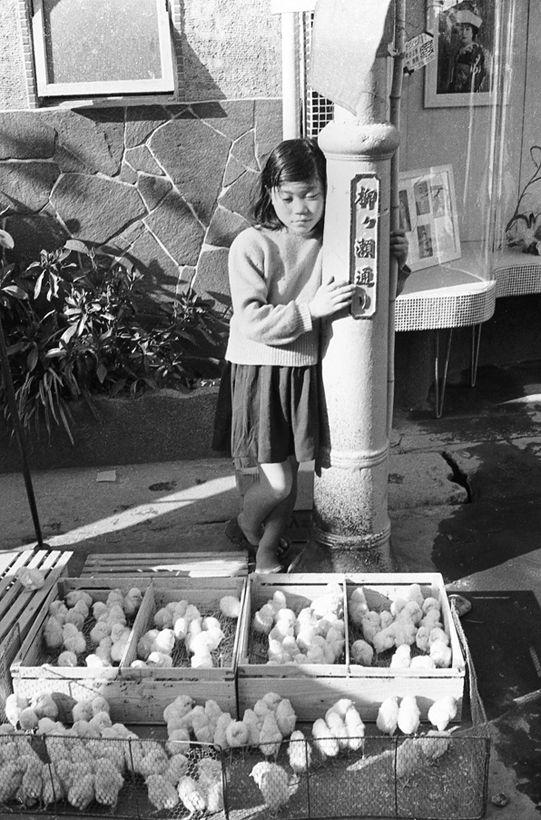 記憶の扉 1956年 | 古い写真, 子供時代, 古写真
