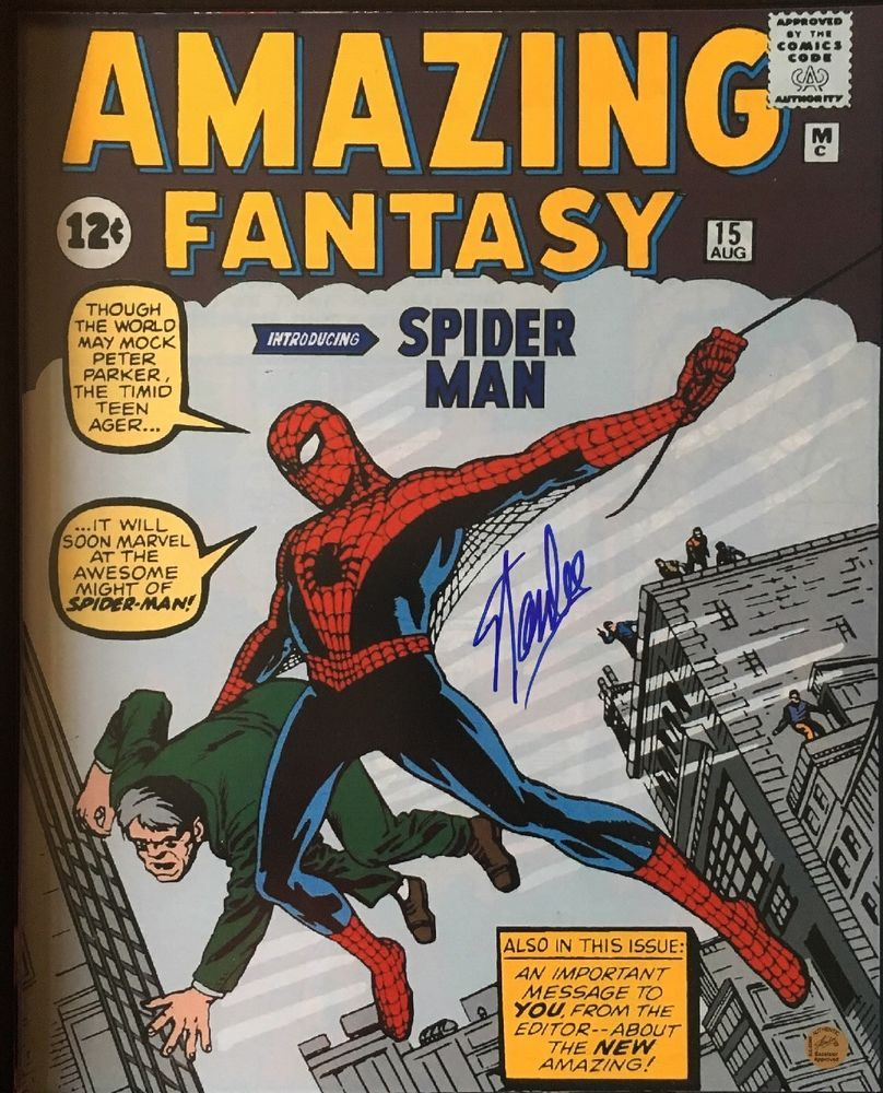 Details about AMAZING FANTASY #15 PHOTO 16x20 SIGNED BY STAN