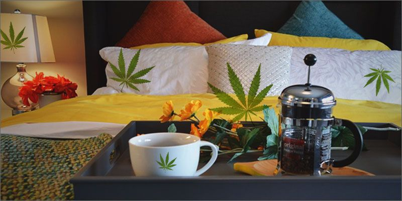 5 Super Easy Ways Hemp Will Detoxify Your Home