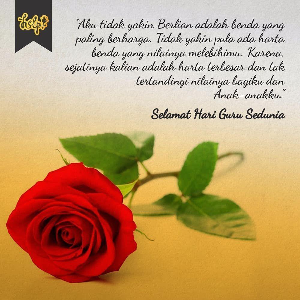 Bunga Ini Sebagai Symbol Rasa Cinta Dan Terima Kasih Kita Kepada Seluruh Guru Yang Ada Di Dunia Kita Doakan Sehat Selalu Dan Ba Selamat Hari Guru Flowers Guru
