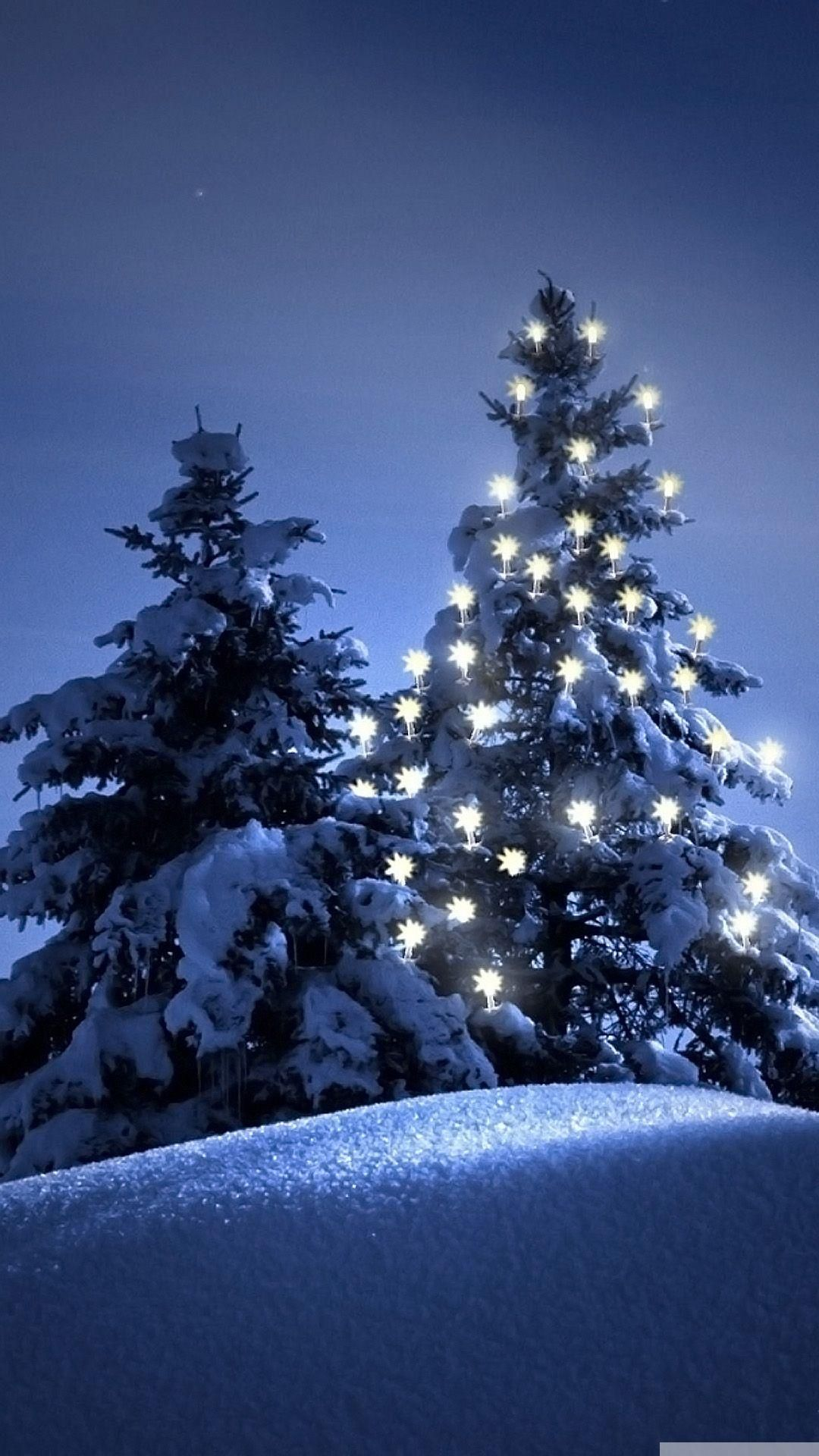 snow-christmas-tree-winter-iphone-6-wallpaper | winter