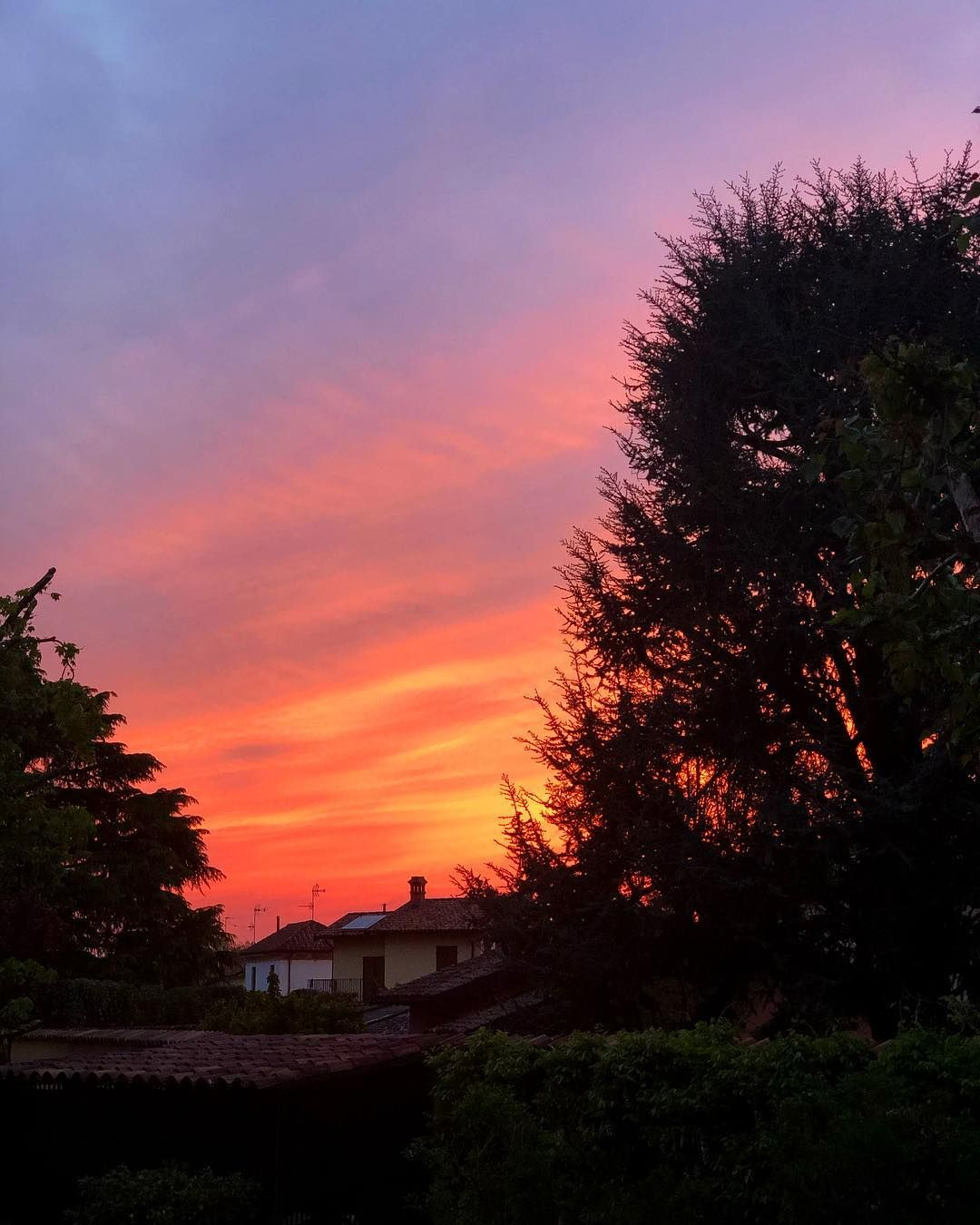 Yesterdays Sunset Was So Pretty Sunset Sun Pretty Spring Beautiful View Landscape Yesterdays Sunset Was So Pretty Sunset Landscape Sunrise Sunset Pink sky sunset sun trees nature