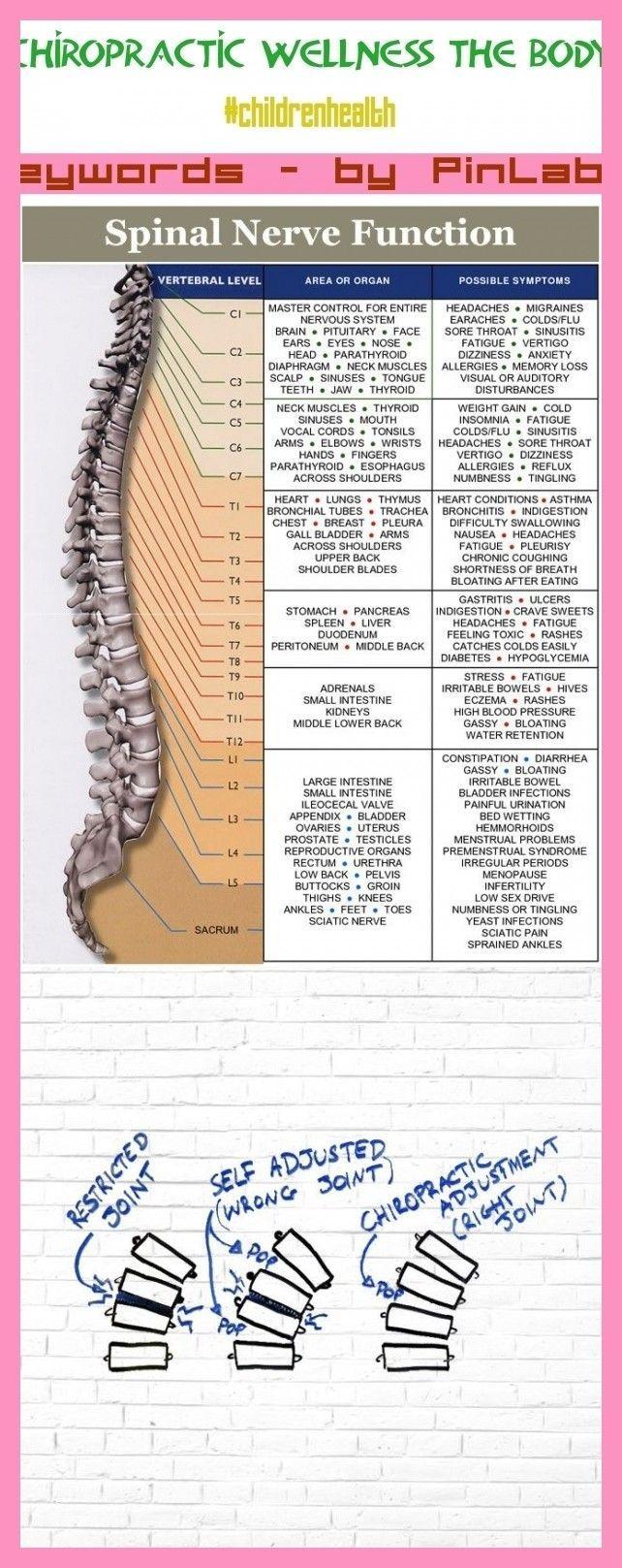 Chiropractic wellness the body chi  Chiropractic wellness the body chi  Chiropractic wellness the body chiropractic wellness health benefits chiropractic wellness qu