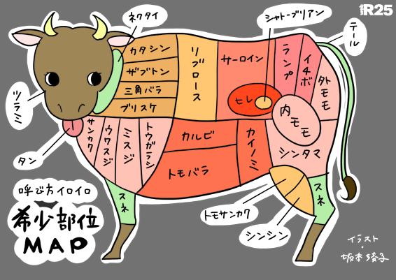 部位MAP/坂本綾子