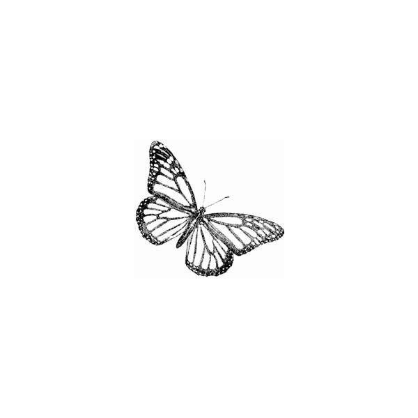 – – #butterflytattoo #Cutejewelry #halfbutterflytattoo #Jewelryinspo